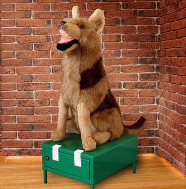 obrázek - pokladnička pes